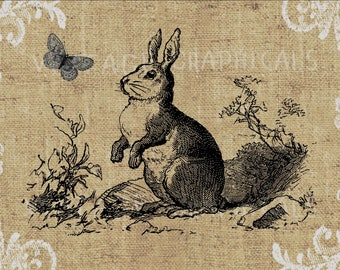 Rabbit Instant clip art graphic digital download image transfer for iron on fabric burlap pillows cards totes decoupage scrapbooks No gt200