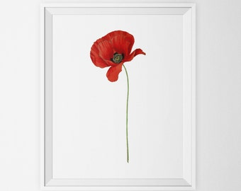 Minimalist Digital Wall Art, Flower Art Print, Floral Art, Bathroom Nursery Wall Decor, Minimalist Print, Vintage Botanical Kitchen Bathroom