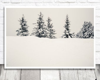 Winter Photography, Winter Photo Print, Winter Print, Winter Printable, Printable Photo, Digital Print, Printable Wall Art, Photo Download