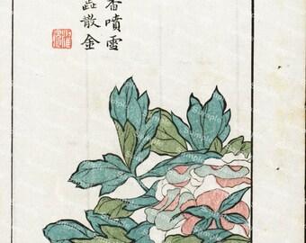 19th Century original  Chinese handcolored woodblock painting Botanical flowers Decorative art wall art art decor