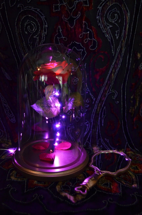 Sale Beauty And The Beast Enchanted Rose Jar Dome Belle W