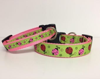 """3/4"""" 1"""" wide Lady Bug Dog Collar - Spring - Summer - Cute - Insect- Dog Gift - Pet -"""