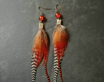Feathers - Feather Necklace earrings