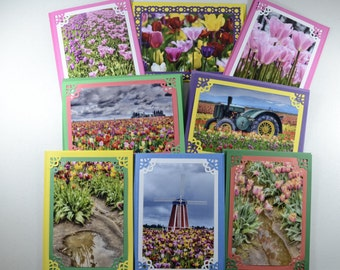Tulips Boxed Set of 8 Blank Note Cards