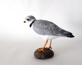 Piping Plover Needle Felted Bird - Made to order