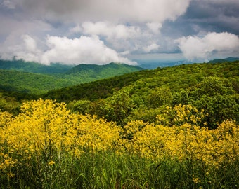 Dramatic sky over the Blue Ridge Mountains in Shenandoah National Park, Virginia.   Photo Print, Stretched Canvas, or Metal Print.