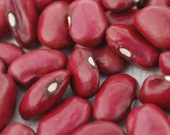 VBD)~HIDATSA RED Dry Bean~Seed!!~~~~Beautiful Ruby Heirloom!!