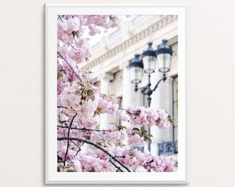 Paris Photography - Paris Cherry Blossoms, Paris Print, Paris Wall Art, Paris Print, Paris Decor, Paris Bedroom Decor, Springtime in Paris