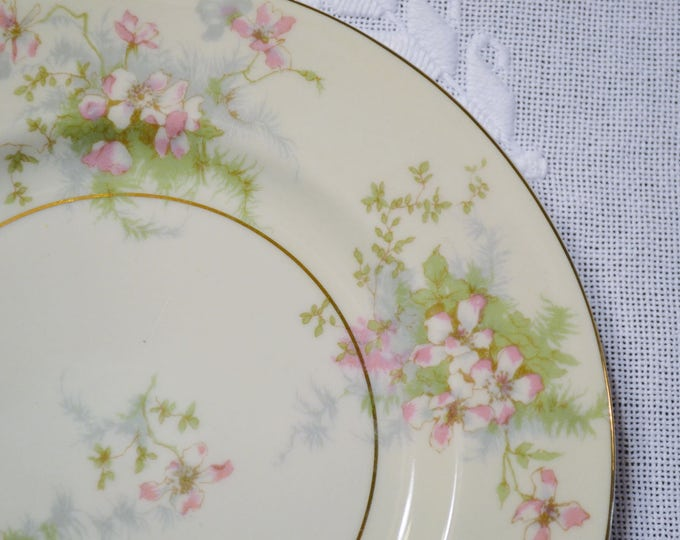 Vintage Theodore Haviland Apple Blossom Salad Plate New York Pink Floral Gold Rim Replacement Wedding Bridal PanchosPorch