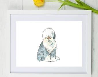 Old English Sheepdog Dog Art Print, old english sheepdog, dog art print, gift for dog lovers, A4 print