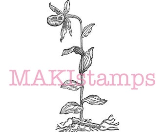 Orchid stamp / Flower / Lady slipper - unmounted rubber stamp or cling stamp option (170310)