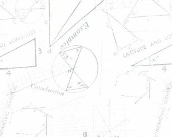 1/2 Yard - Modern Background Paper - Silver White - Zen Chic - Brigitte Heitland - Moda - Fabric Yardage - 1583 11