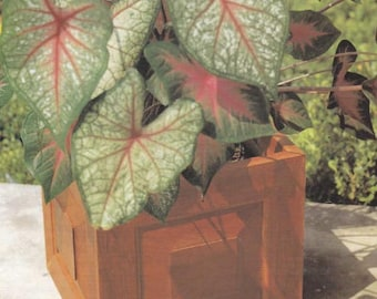 Raised Panel Planter Woodworking Plans