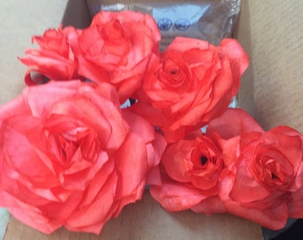 Coffee Filter Roses set of 6