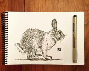KillerBeeMoto: Original Pen Sketch of a Rabbit