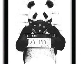 Bad Panda Print by Balazs Solti