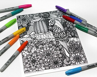 Mandala coloring, drawing #8811 printed on cardboard, coloring of relaxation, Parrot, forest, waterfalls