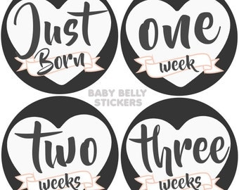Baby Month Stickers, Monthly Baby Stickers, Monthly Milestone Stickers, Baby Monthly Stickers, Baby Belly Stickers, Girls
