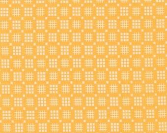 Morningside Farm - Screamin' Yellow - by Robert Kaufman