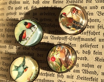 Button set vintage birds