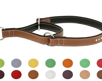 Premium Floater Studded Leather Martingale Dog Collar Double Ply Training 12 Colors Size XS S M1 M2 L XL XXL Flat Durable Pet Dog Fashion