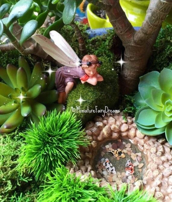 Fairy Garden Pond Miniature Pond Miniature Fish Fairy Garden Accessories Fairy Garden