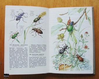 School atlas-determinant of invertebrates - 298 drawings (In Russian) - Hardcover - 1991. Vintage Soviet Entomology Book. Print