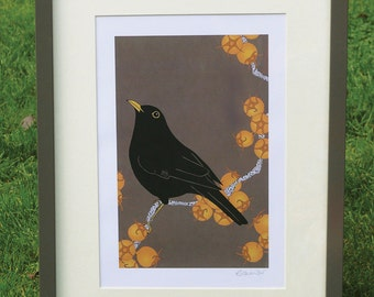 Blackbird & king hawthorn A4 print