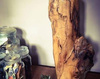 Driftwood centrepiece, driftwood sculpture, driftwood art, driftwood decor, natural sculpture, natural art, Dorset driftwood