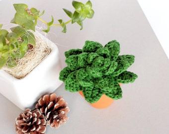 Crochet succulent plants, Artificial plant, Artificial succulent crochet plant, Home decor agave plant, Echeveria agavoide housewarming gift