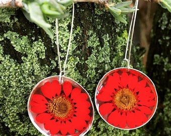 sterling silver terrarium real red daisies preserved in resin earrings , bohemian , boho, love, Mother's Day , gift, nature, spring