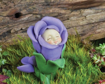 Fairy Garden  - February Violet Baby - Miniature