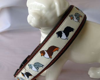 Neoprene padded dog Collar *Sheltie*