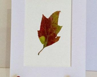 Real Pressed Flower Fern Leaf Botanical Art Herbarium of Oak Leaf Hydrangea Leaf 3x5 OR 5x7
