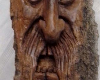 Large Angry Evil Wizard Tree Spirit Hand Carved Cottonwood Bark