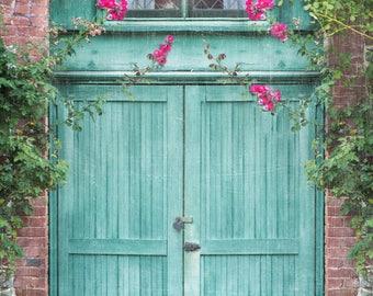 Door Wall Art, Door Wall Decor, Home Decor, Home Wall Art, Home Wall Decor, Fine Art Print, Print, Teal Green, Cat Wall Art, Cat Wall Decor