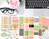 Bella Rosa No White-Space Weekly Kit - Planner Stickers