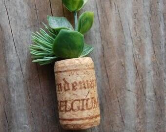 Botanical Wine Cork Magnet Evergreen and Vine on Belgium Wine Cork