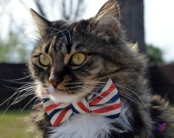 Postal stripe cat collar, postal stripe bow tie for cat, 4th of July cat collar, 4th of july cat bow tie, patriotic bow tie collar for cat