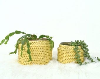 Pair of Blonde Nesting Straw Baskets, Planters