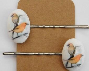 Bird hair clips/ bobby pins