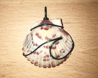 Shell Wire Wrapped Necklace
