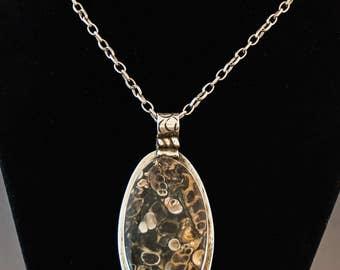 A Special Turritella Agate Necklace