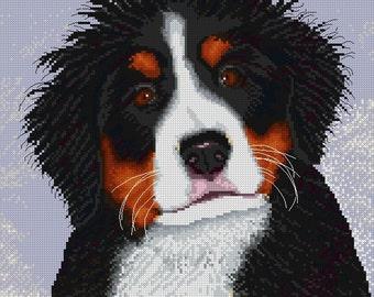 Fuzzy Head Berner Puppy Cross Stitch Pattern Chart-Cute Bernese Mountain Dog Puppy. Stitches=155w x 170h. On 14 ct=11W x 12 1/8H inches