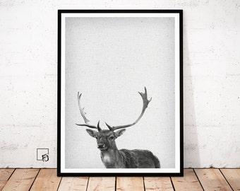 Deer Wall Art Print, Deer Head, Antlers, Woodlands Nursery Animal, Digital Download, Large Vertical Poster, Black and White, Nursery Decor