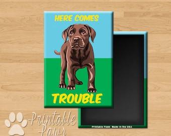 Chocolate Lab Puppy Magnet- Gift Premium Fridge Magnet