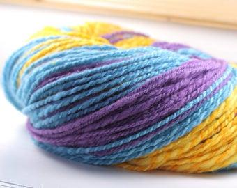2-ply Handspun Yarn: Rainbow Connection Color Scheme 3