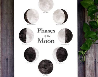 School Room Chart - Phases of the Moon- 13 x 19 Poster - Lunar, Montessori, Home School, Educational, Astronomy, Nature Study