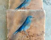 Bird Stone Photo Coasters - Western Bluebird Coasters - Wild Bluebird Gifts - Stone Coaster Bluebird Photo - Blue Bird Decor - Ready to Ship