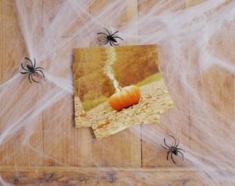 Fairytale Fall Postcard Set Of Five